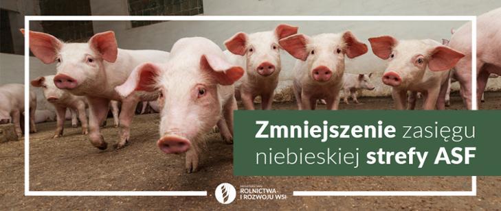 Mniejsze restrykcje na hodowców świń na Lubelszczyźnie