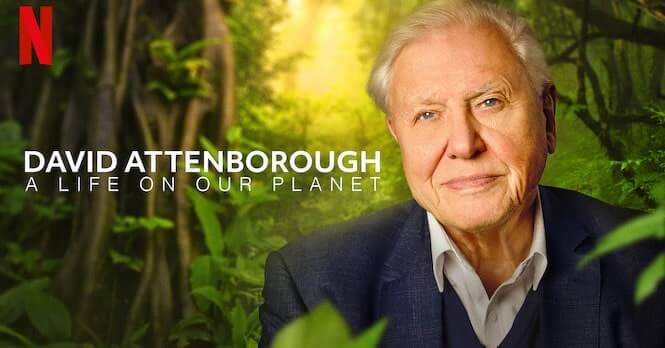 David Attenborough: Życie na naszej planecie – recenzja czytelnika